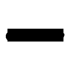 DP zaliv logo